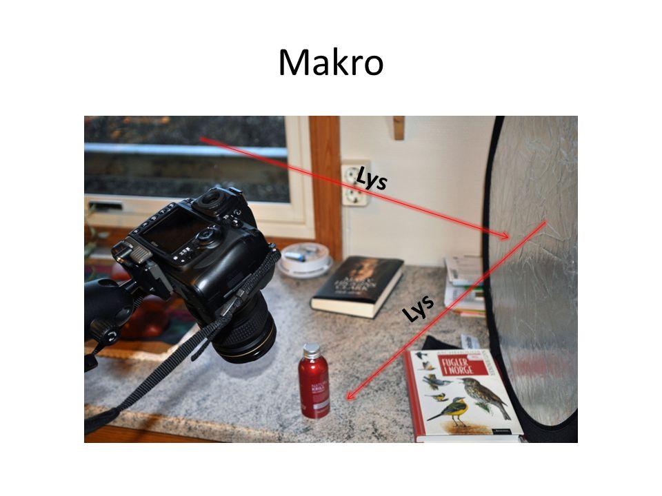 Makro Lys