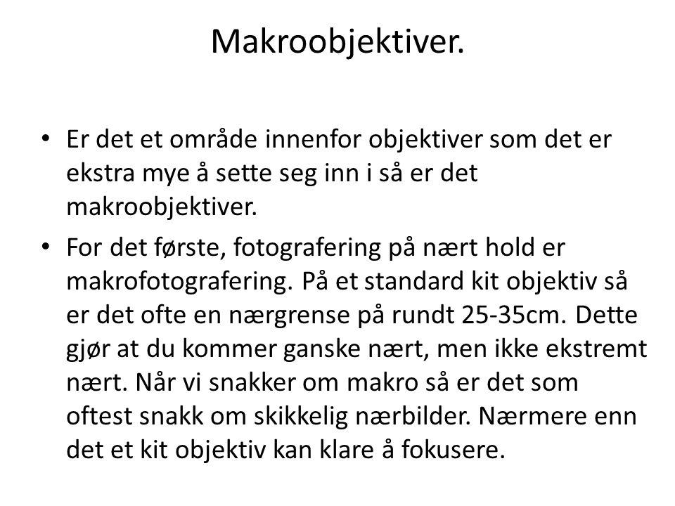 Makroobjektiver. • Er det et område innenfor objektiver som det er ekstra mye å sette seg inn i så er det makroobjektiver. • For det første, fotografe