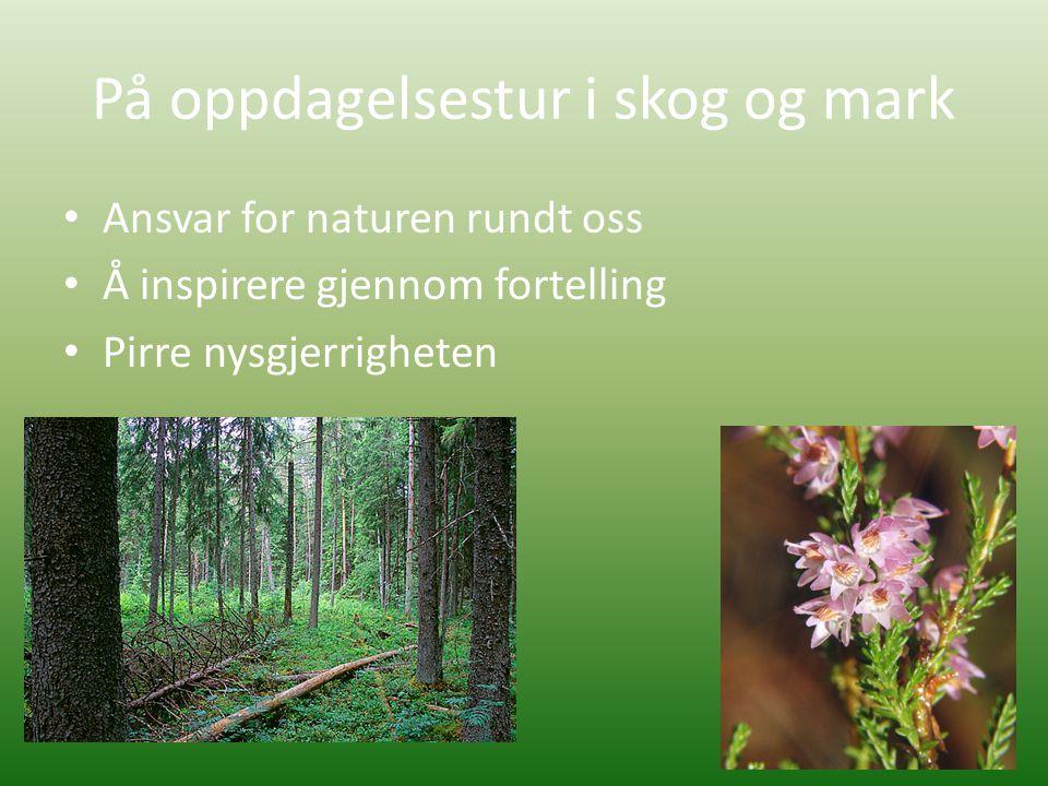 På oppdagelsestur i skog og mark • Ansvar for naturen rundt oss • Å inspirere gjennom fortelling • Pirre nysgjerrigheten