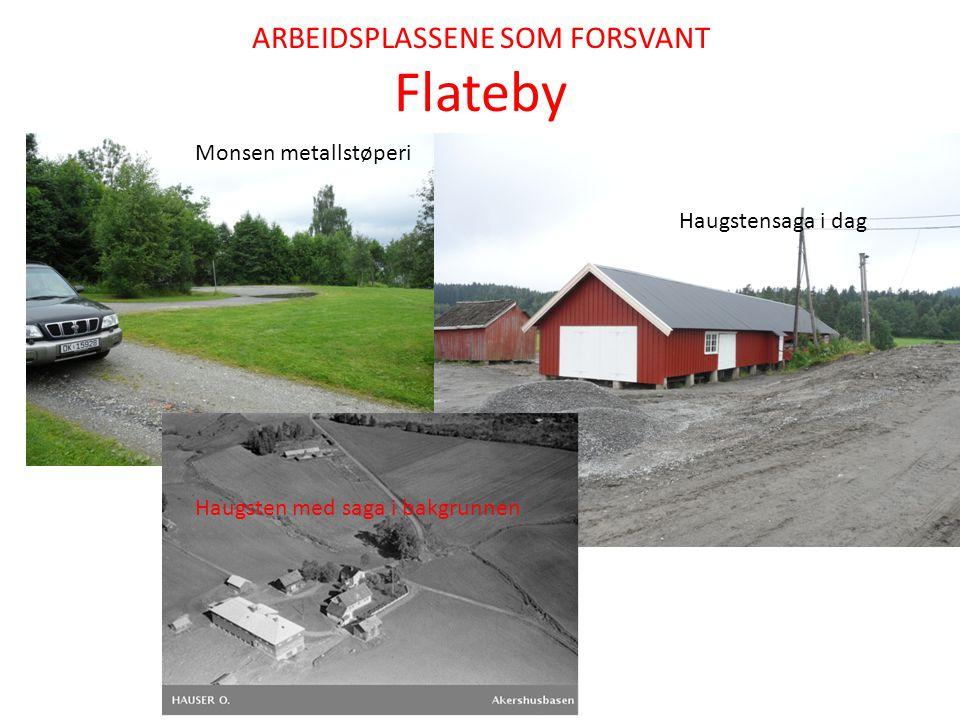 ARBEIDSPLASSENE SOM FORSVANT Flateby Monsen metallstøperi Haugstensaga i dag Haugsten med saga i bakgrunnen