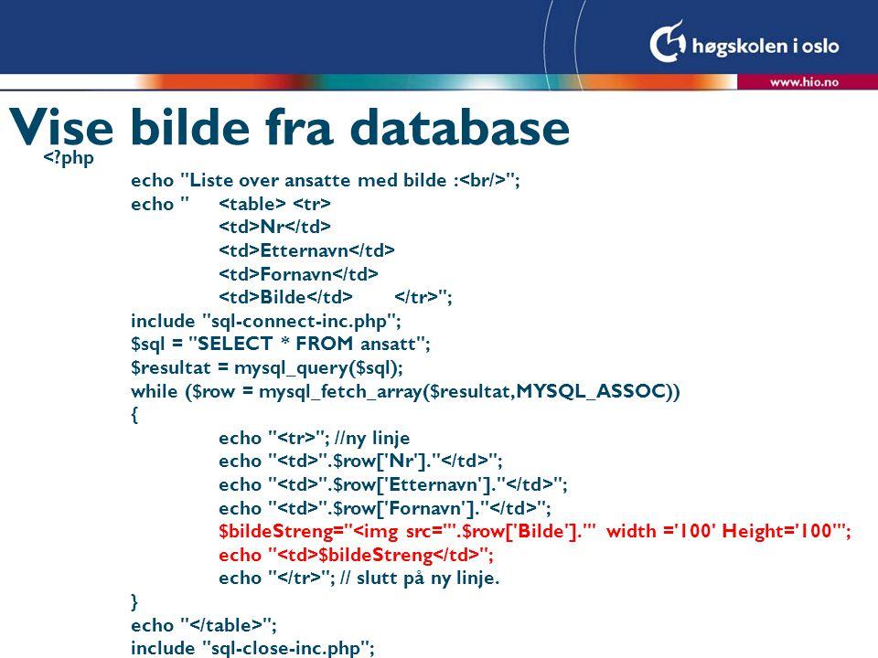 Vise bilde fra database <?php echo