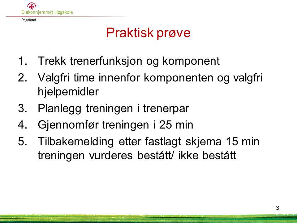 Praktisk prøve 1.Trekk trenerfunksjon og komponent 2.Valgfri time innenfor komponenten og valgfri hjelpemidler 3.Planlegg treningen i trenerpar 4.Gjen
