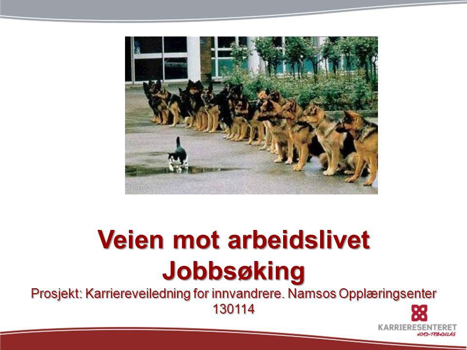 Veien mot arbeidslivet Jobbsøking Prosjekt: Karriereveiledning for innvandrere. Namsos Opplæringsenter 130114
