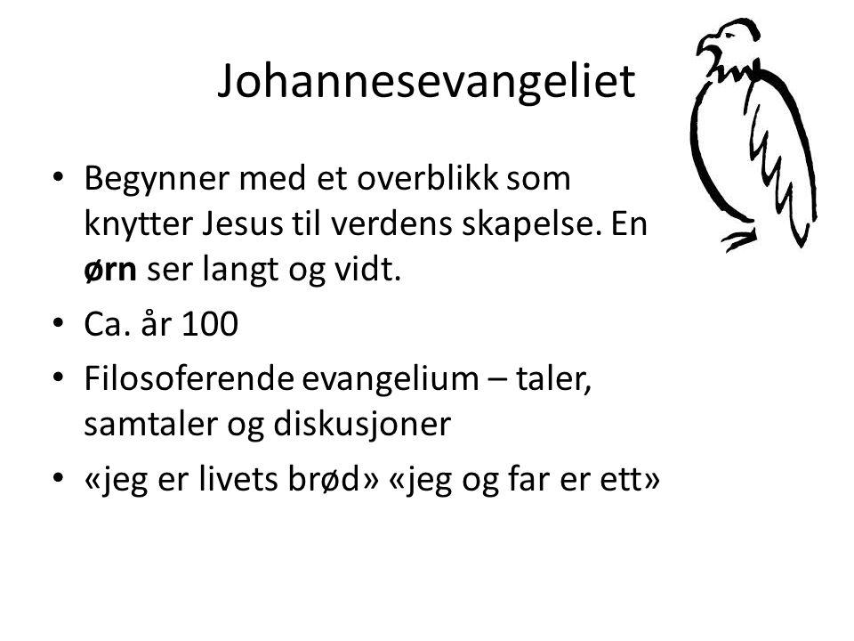 Johannesevangeliet • Begynner med et overblikk som knytter Jesus til verdens skapelse.