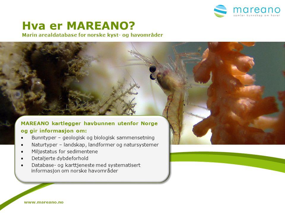 Hva er MAREANO? Marin arealdatabase for norske kyst- og havområder MAREANO kartlegger havbunnen utenfor Norge og gir informasjon om: •Bunntyper – geol