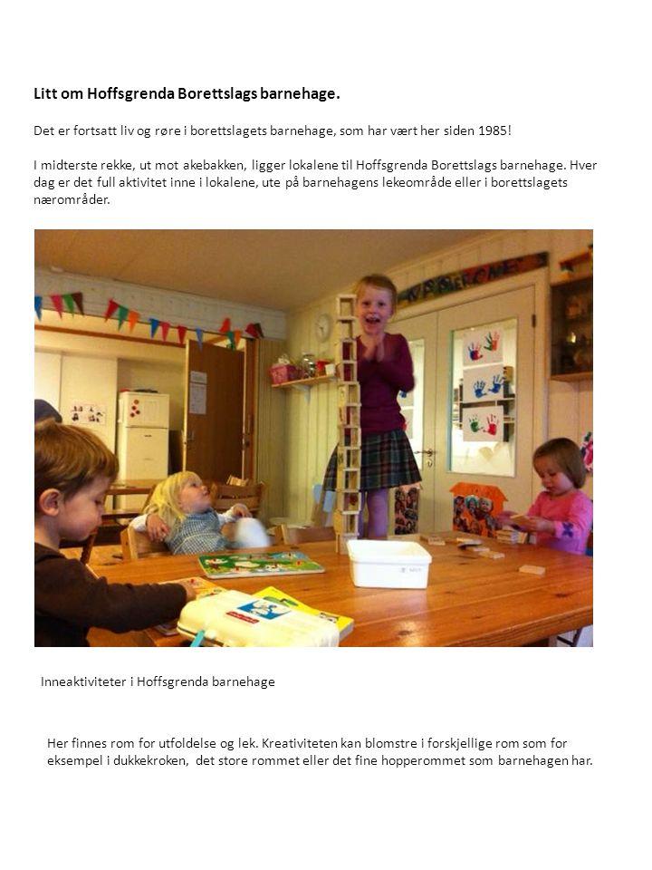 Litt om Hoffsgrenda Borettslags barnehage. Det er fortsatt liv og røre i borettslagets barnehage, som har vært her siden 1985! I midterste rekke, ut m