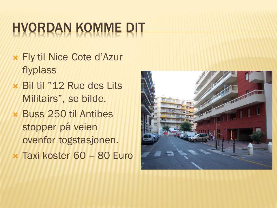  Fly til Nice Cote d'Azur flyplass  Bil til 12 Rue des Lits Militairs , se bilde.