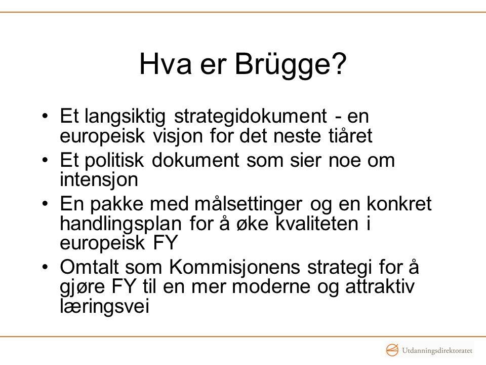Hva er Brügge? •Et langsiktig strategidokument - en europeisk visjon for det neste tiåret •Et politisk dokument som sier noe om intensjon •En pakke me