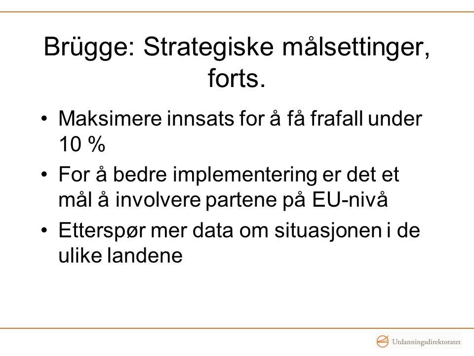 Brügge: Strategiske målsettinger, forts. •Maksimere innsats for å få frafall under 10 % •For å bedre implementering er det et mål å involvere partene