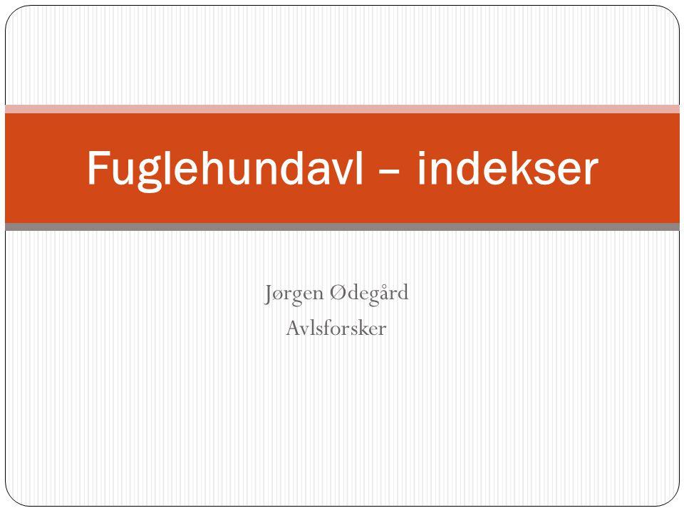 Jørgen Ødegård Avlsforsker Fuglehundavl – indekser