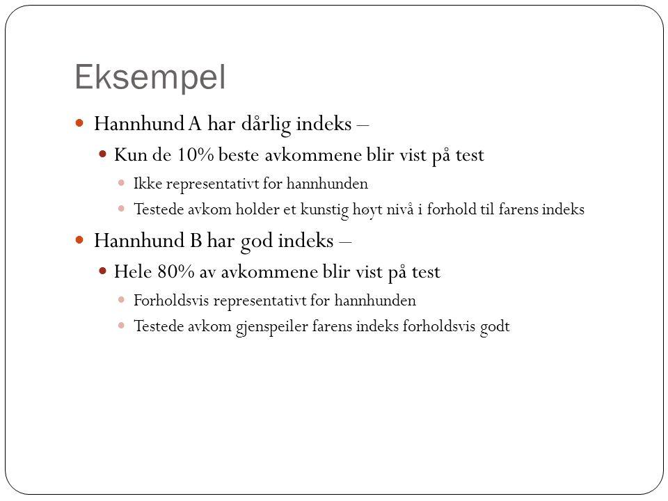 Eksempel  Hannhund A har dårlig indeks –  Kun de 10% beste avkommene blir vist på test  Ikke representativt for hannhunden  Testede avkom holder e