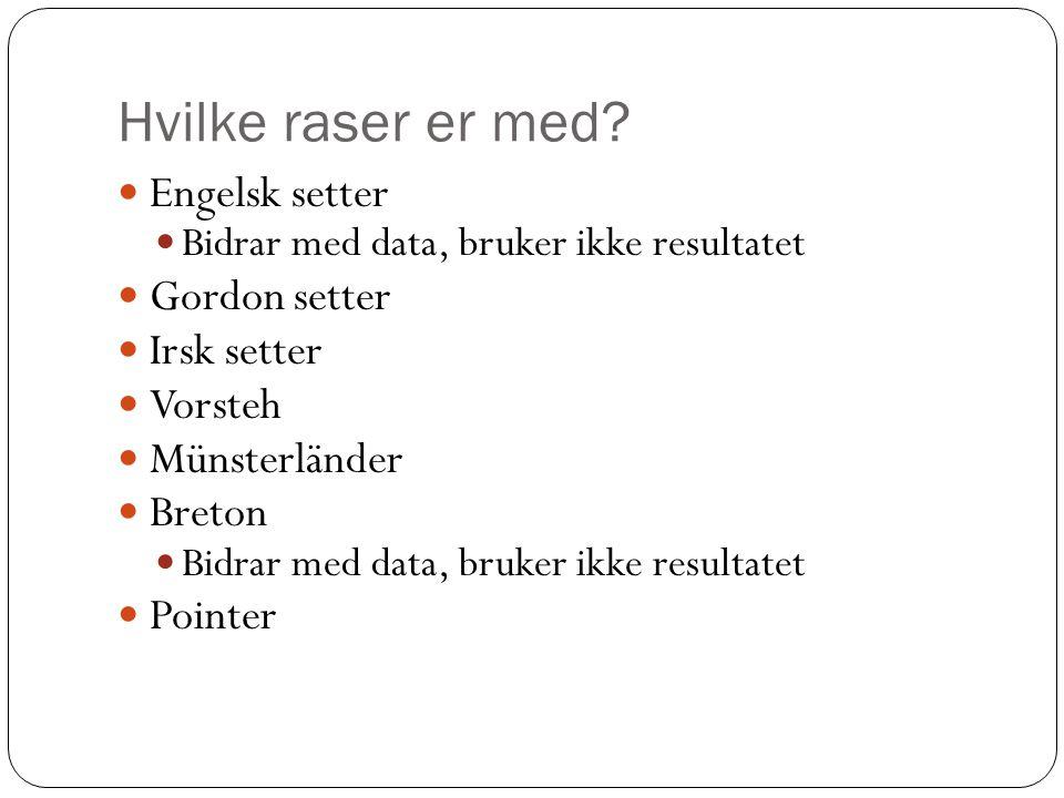Hvilke raser er med?  Engelsk setter  Bidrar med data, bruker ikke resultatet  Gordon setter  Irsk setter  Vorsteh  Münsterländer  Breton  Bid