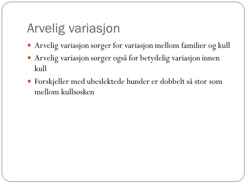 Arvelig variasjon  Arvelig variasjon sørger for variasjon mellom familier og kull  Arvelig variasjon sørger også for betydelig variasjon innen kull