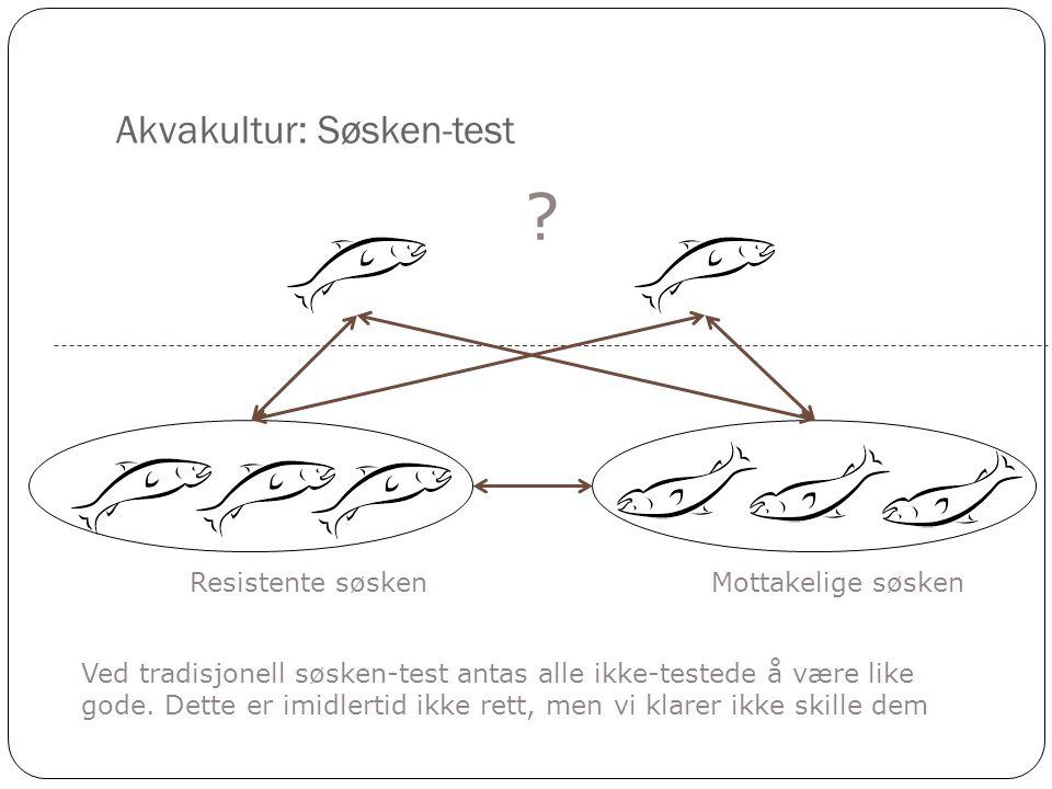 Akvakultur: Søsken-test Resistente søsken ? Ved tradisjonell søsken-test antas alle ikke-testede å være like gode. Dette er imidlertid ikke rett, men