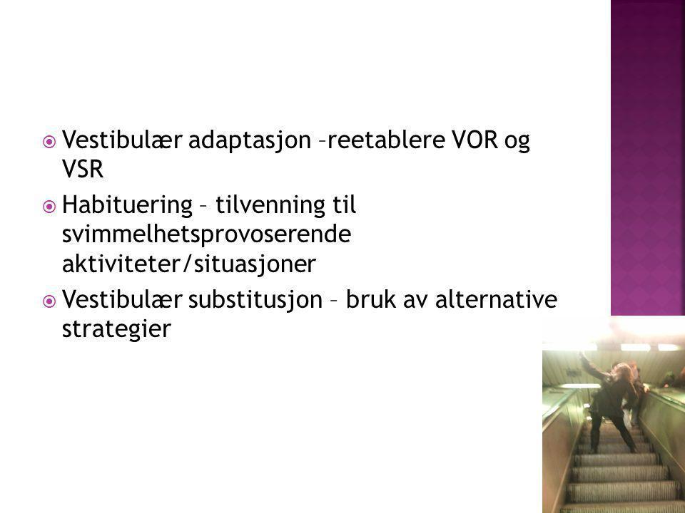  Vestibulær adaptasjon –reetablere VOR og VSR  Habituering – tilvenning til svimmelhetsprovoserende aktiviteter/situasjoner  Vestibulær substitusjo