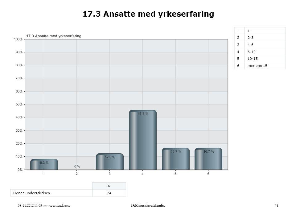 09.11.2012 11:03 www.questback.comSAK ingeniørutdanning48 17.3 Ansatte med yrkeserfaring 11 22-3 34-6 46-10 510-15 6mer enn 15 N Denne undersøkelsen24