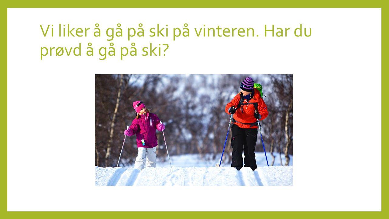 Vi liker å gå på ski på vinteren. Har du prøvd å gå på ski?