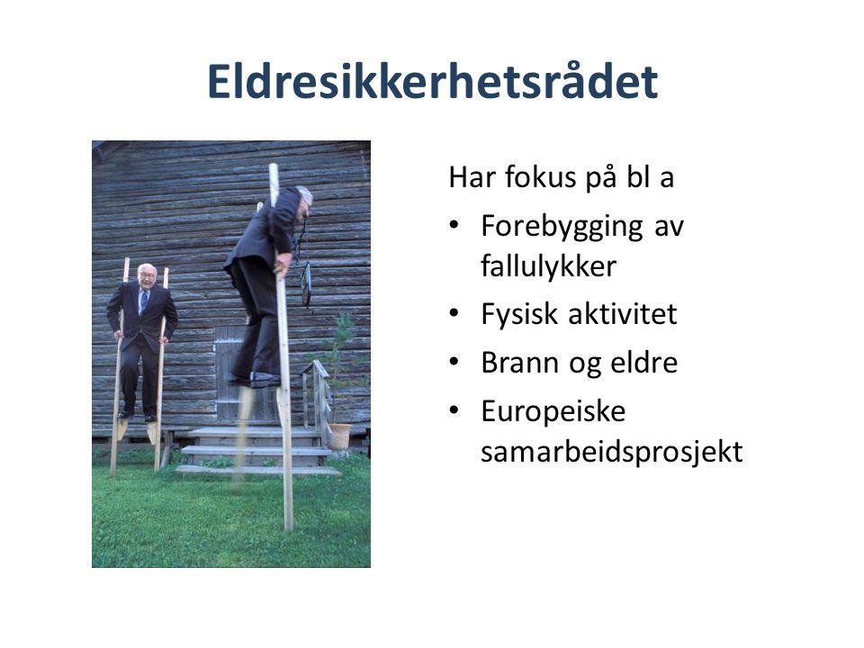 Eldresikkerhetsrådet Har fokus på bl a • Forebygging av fallulykker • Fysisk aktivitet • Brann og eldre • Europeiske samarbeidsprosjekt