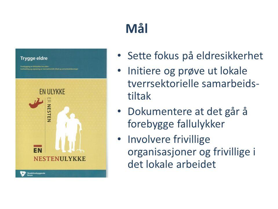 Mål • Sette fokus på eldresikkerhet • Initiere og prøve ut lokale tverrsektorielle samarbeids- tiltak • Dokumentere at det går å forebygge fallulykker