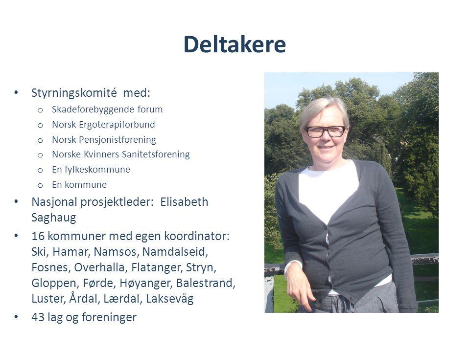 Deltakere • Styrningskomité med: o Skadeforebyggende forum o Norsk Ergoterapiforbund o Norsk Pensjonistforening o Norske Kvinners Sanitetsforening o E