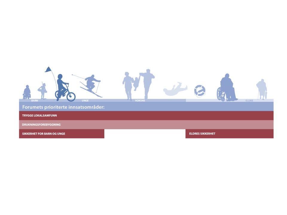 Trygge eldre Fallforebyggende tiltak på lokal nivå.