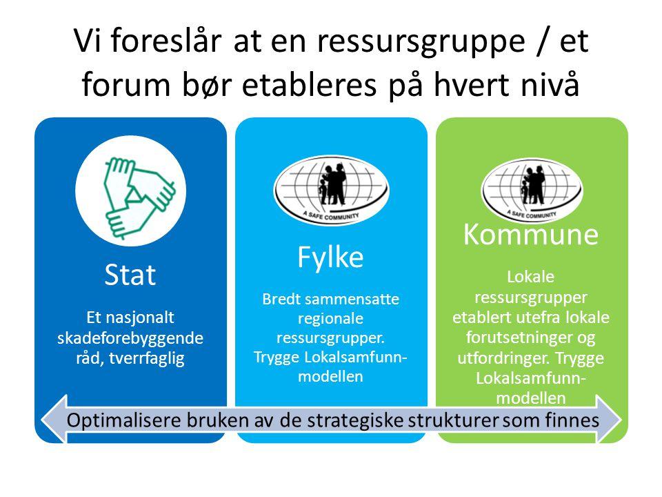 Vi foreslår at en ressursgruppe / et forum bør etableres på hvert nivå Stat Et nasjonalt skadeforebyggende råd, tverrfaglig Fylke Bredt sammensatte re