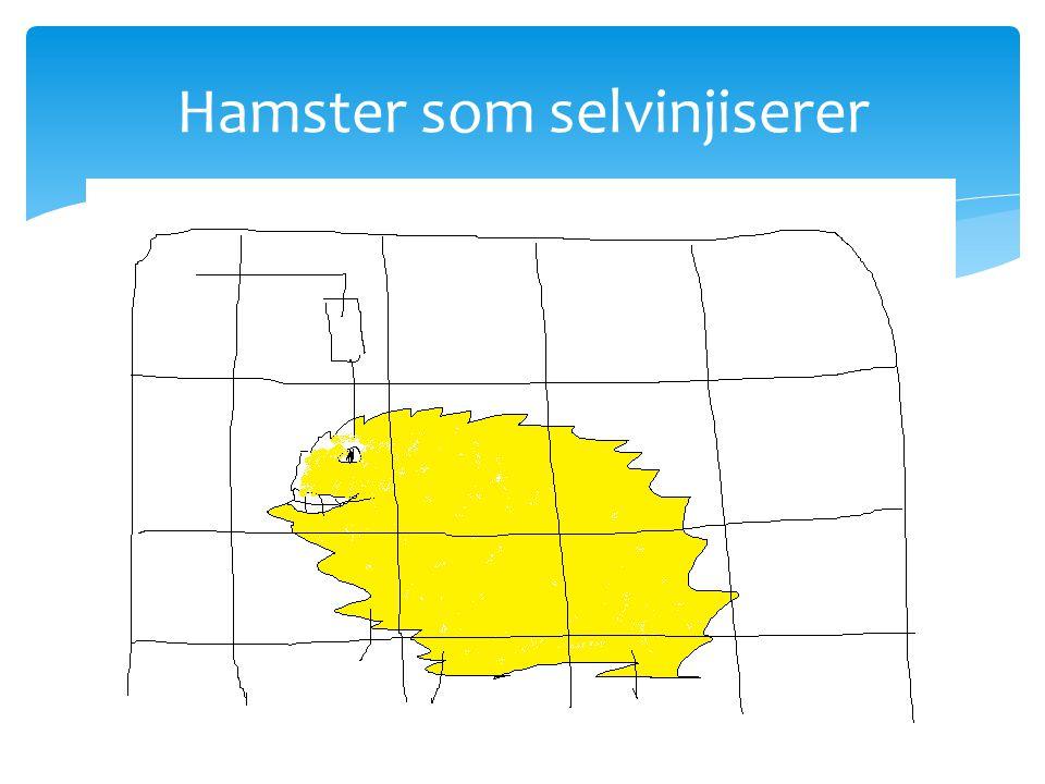 Hamster som selvinjiserer