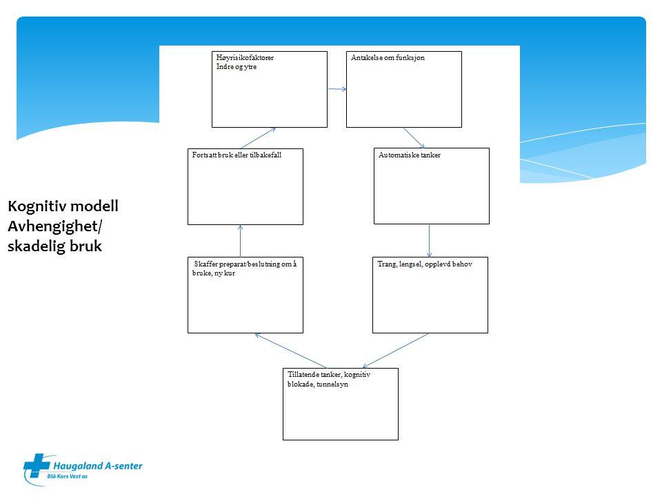 Kognitiv modell Avhengighet/ skadelig bruk