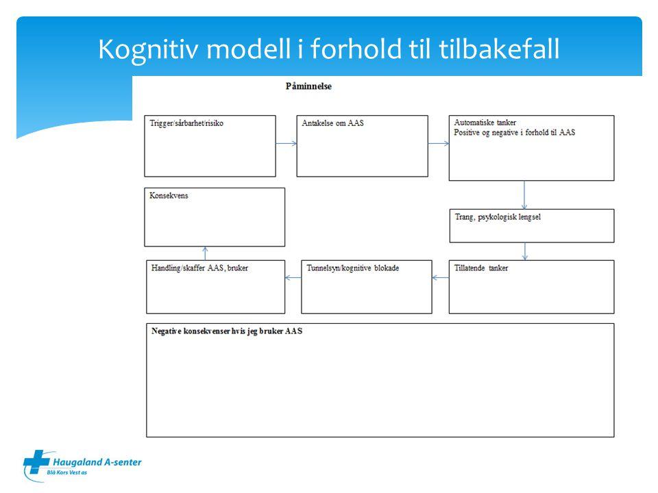Kognitiv modell i forhold til tilbakefall