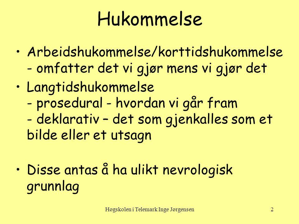 Høgskolen i Telemark Inge Jørgensen3 Arbeidshukommelse •Arbeidshukommelse/korttids- hukommelse.