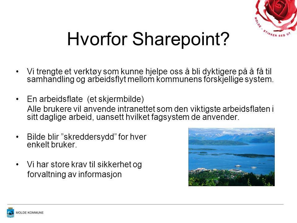 Hvorfor Sharepoint? •Vi trengte et verktøy som kunne hjelpe oss å bli dyktigere på å få til samhandling og arbeidsflyt mellom kommunens forskjellige s