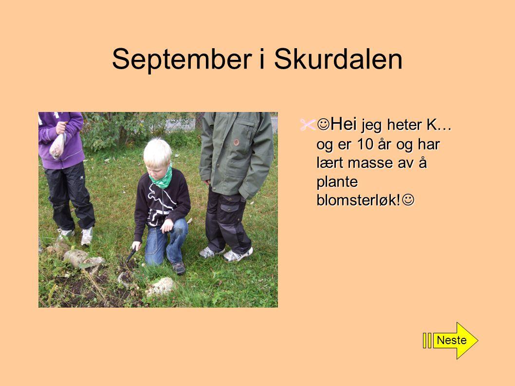 September i Skurdalen  Hei jeg heter K… og er 10 år og har lært masse av å plante blomsterløk!  Neste