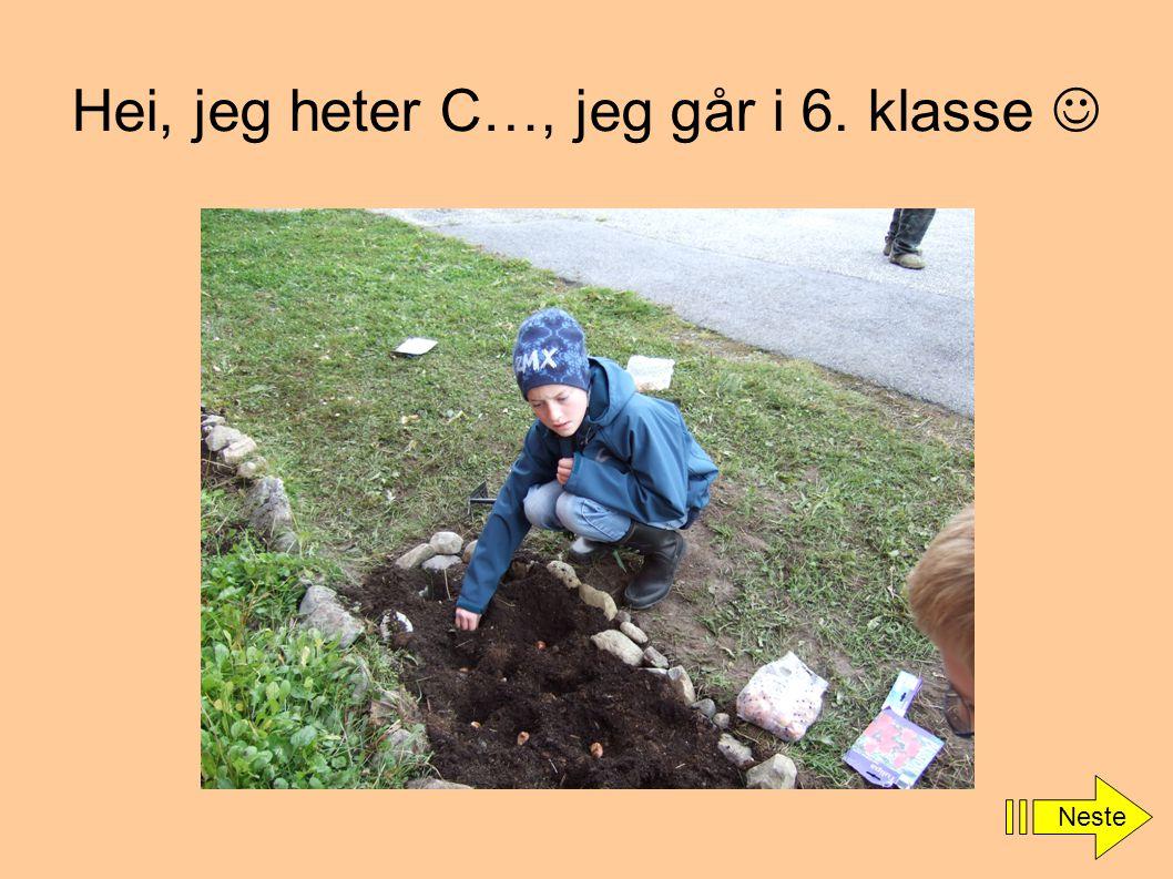 Her er hele klassen da vi var ferdige med å plante. Neste