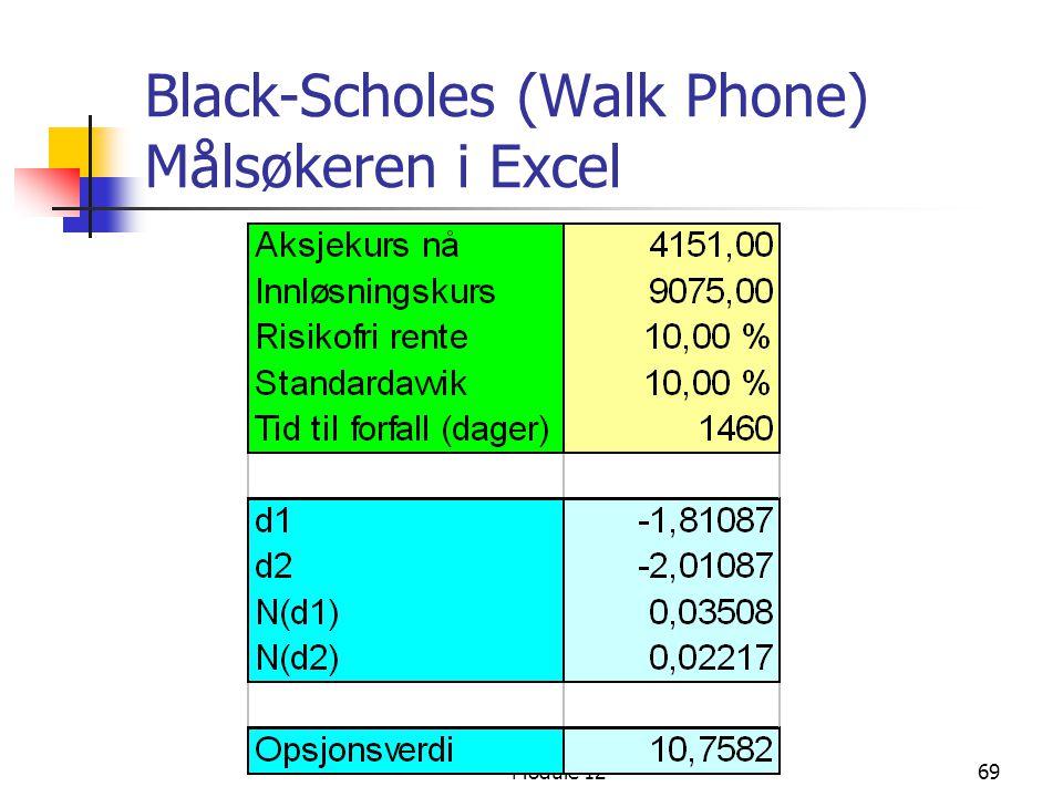 Module 1269 Black-Scholes (Walk Phone) Målsøkeren i Excel