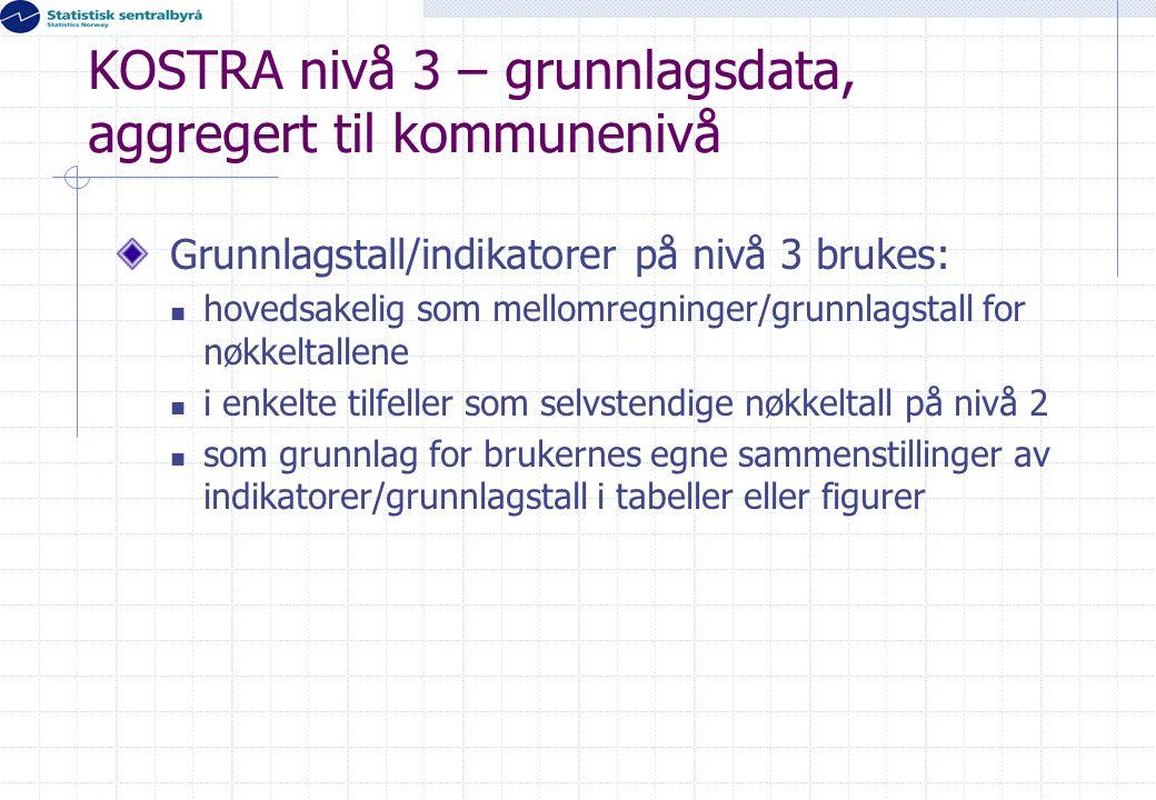 KOSTRA nivå 3 – grunnlagsdata, aggregert til kommunenivå Grunnlagstall/indikatorer på nivå 3 brukes:  hovedsakelig som mellomregninger/grunnlagstall