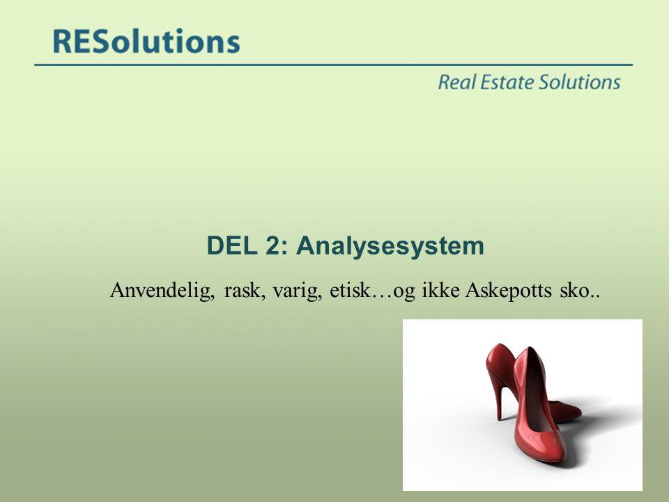 DEL 2: Analysesystem Anvendelig, rask, varig, etisk…og ikke Askepotts sko..