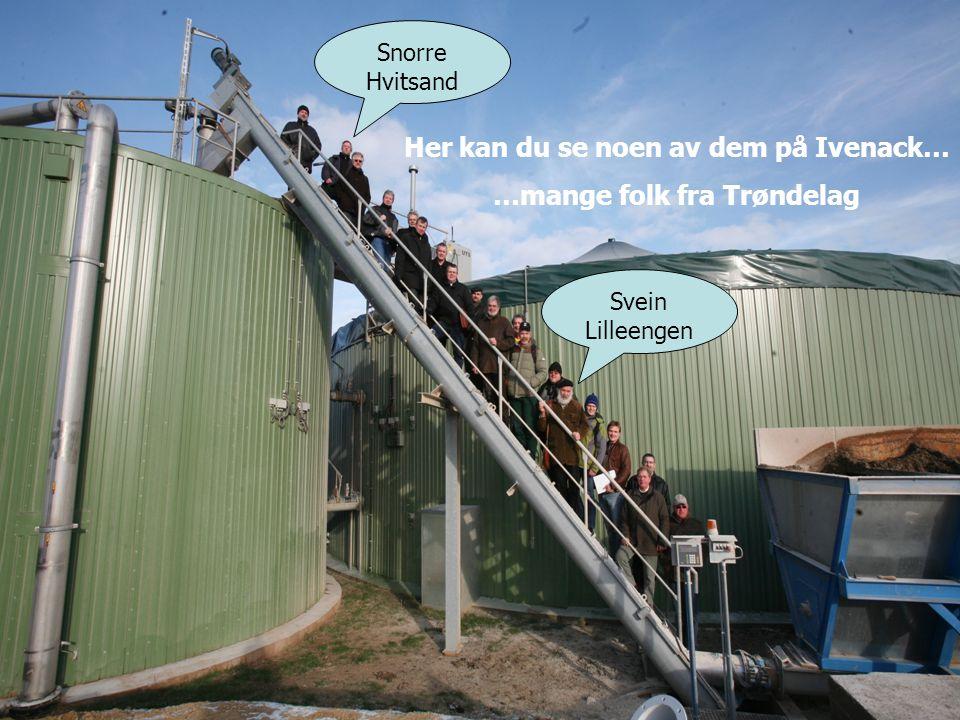 energiegewinn.de Her kan du se noen av dem på Ivenack… …mange folk fra Trøndelag Svein Lilleengen Snorre Hvitsand