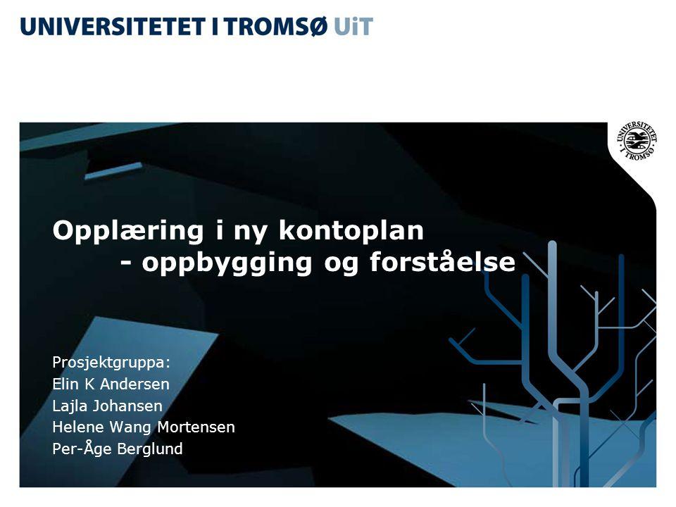 Opplæring i ny kontoplan - oppbygging og forståelse Prosjektgruppa: Elin K Andersen Lajla Johansen Helene Wang Mortensen Per-Åge Berglund