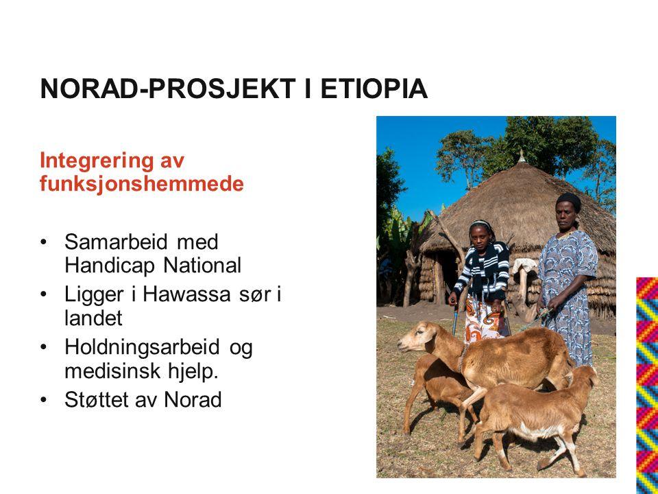 NORAD-PROSJEKT I ETIOPIA Integrering av funksjonshemmede •Samarbeid med Handicap National •Ligger i Hawassa sør i landet •Holdningsarbeid og medisinsk