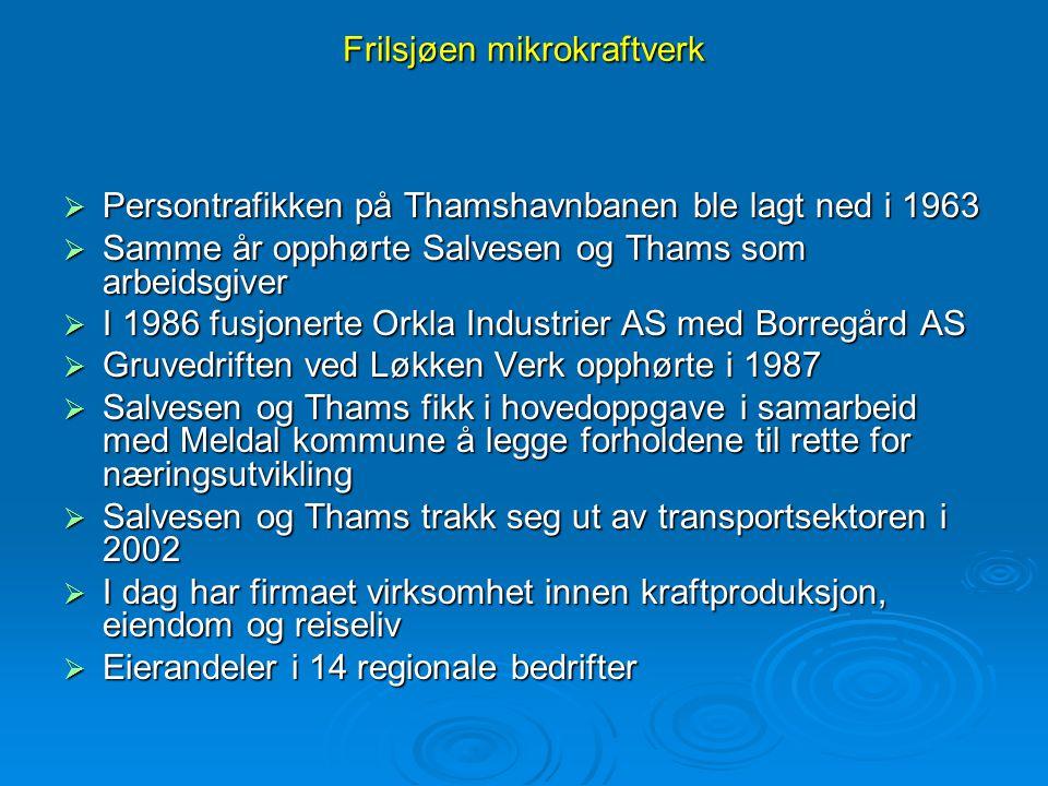 Frilsjøen mikrokraftverk  Skjenaldfossen sto ferdig i 1906 og leverte en effekt på 300 kW  Sagbergfossen ble satt i drift i 1917  Sølbergfallet kraftstasjon sto ferdig i 1921  Frilsjøen mikrokraftverk ble satt i drift i 2001  Styggtjønna mikrokraftverk ble ferdigstilt i 2003 Kraftverkene