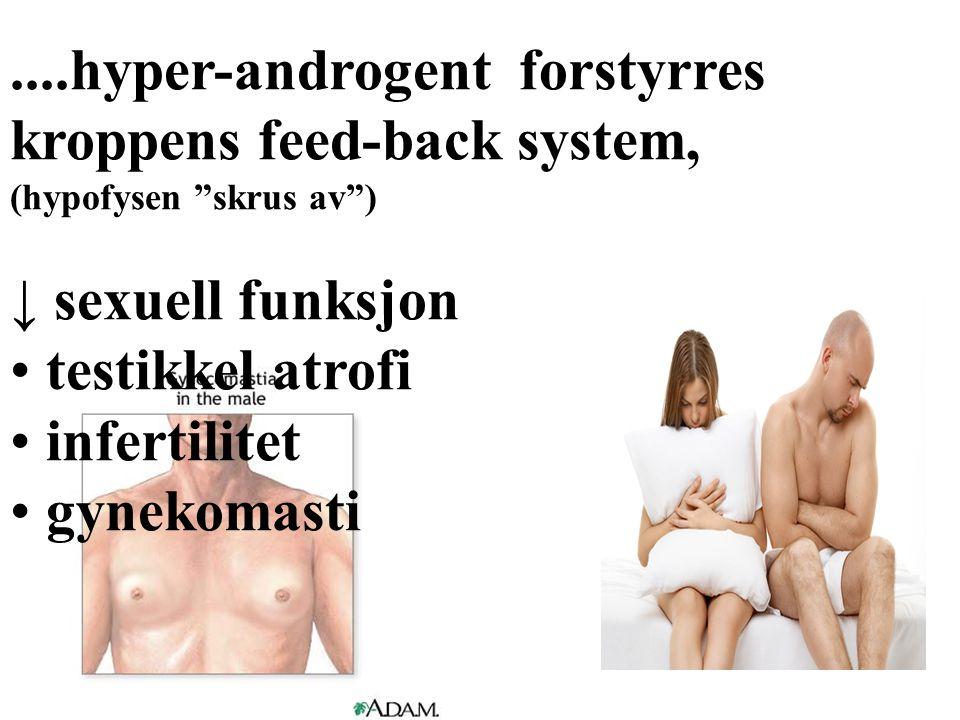 """....hyper-androgent forstyrres kroppens feed-back system, (hypofysen """"skrus av"""") ↓ sexuell funksjon • testikkel atrofi • infertilitet • gynekomasti"""