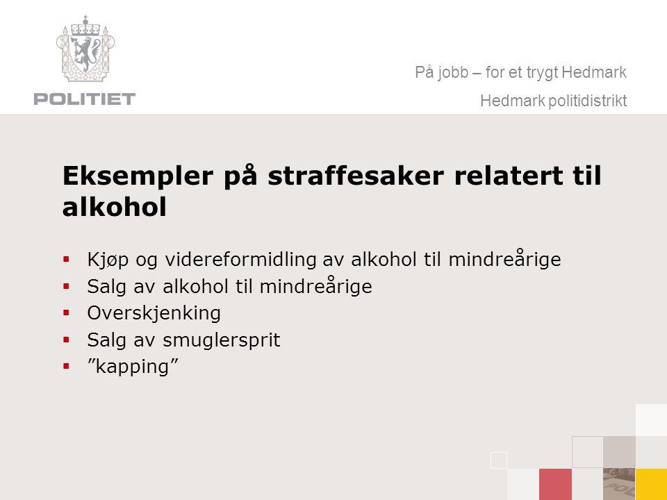 På jobb – for et trygt Hedmark Hedmark politidistrikt Eksempler på straffesaker relatert til alkohol  Kjøp og videreformidling av alkohol til mindreårige  Salg av alkohol til mindreårige  Overskjenking  Salg av smuglersprit  kapping