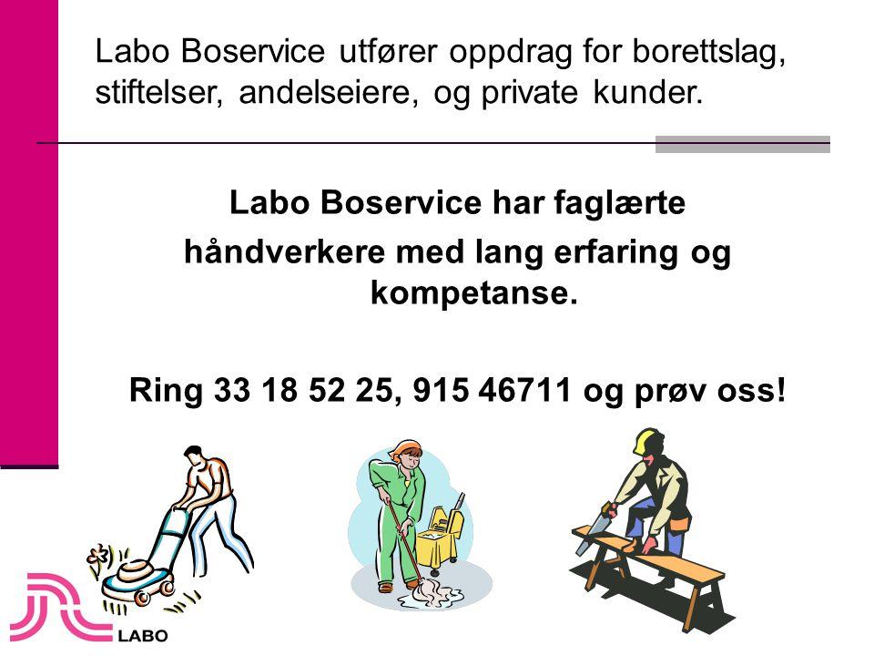 Labo Boservice har faglærte håndverkere med lang erfaring og kompetanse. Ring 33 18 52 25, 915 46711 og prøv oss! Labo Boservice utfører oppdrag for b