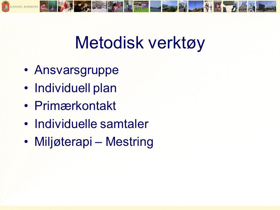 Metodisk verktøy •Ansvarsgruppe •Individuell plan •Primærkontakt •Individuelle samtaler •Miljøterapi – Mestring