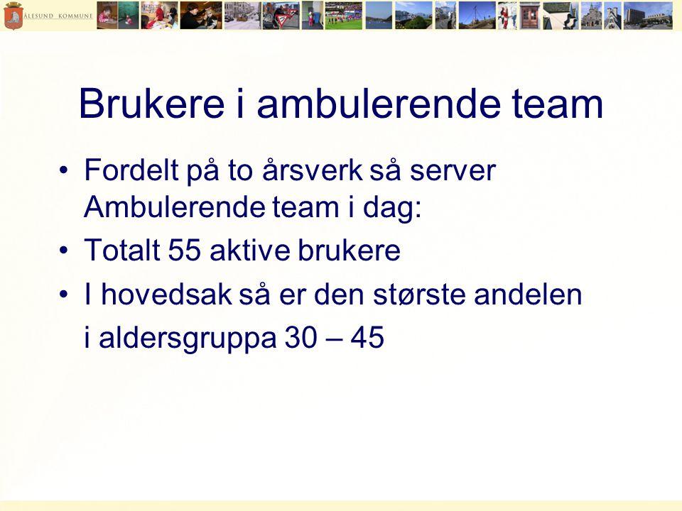 Brukere i ambulerende team •Fordelt på to årsverk så server Ambulerende team i dag: •Totalt 55 aktive brukere •I hovedsak så er den største andelen i aldersgruppa 30 – 45
