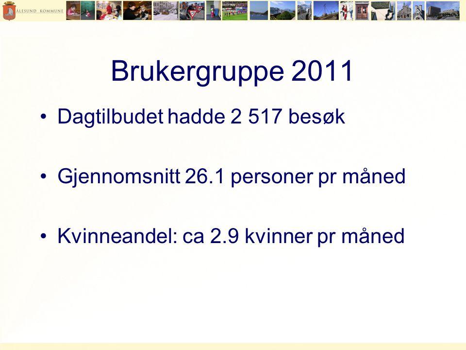 Brukergruppe 2011 •Dagtilbudet hadde 2 517 besøk •Gjennomsnitt 26.1 personer pr måned •Kvinneandel: ca 2.9 kvinner pr måned