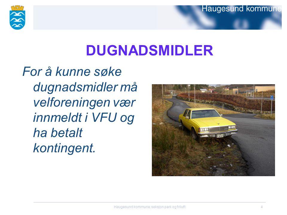 Haugesund kommune, seksjon park og friluft5 DUGNADSMIDLER Eksempler på tilskuddsberettige tiltak:  Plante busker/trær i nærmiljøet.