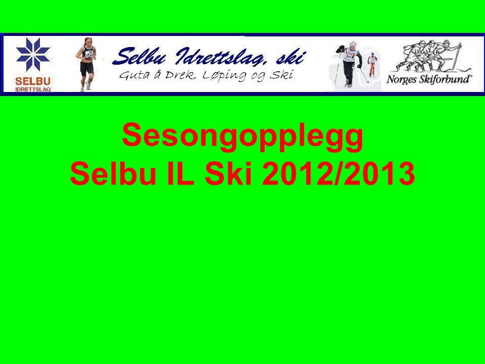 Evaluering sesongen 2011/2012 •Totalt 53 (66 forrige) utøvere innom på trening sesongen 10/11.