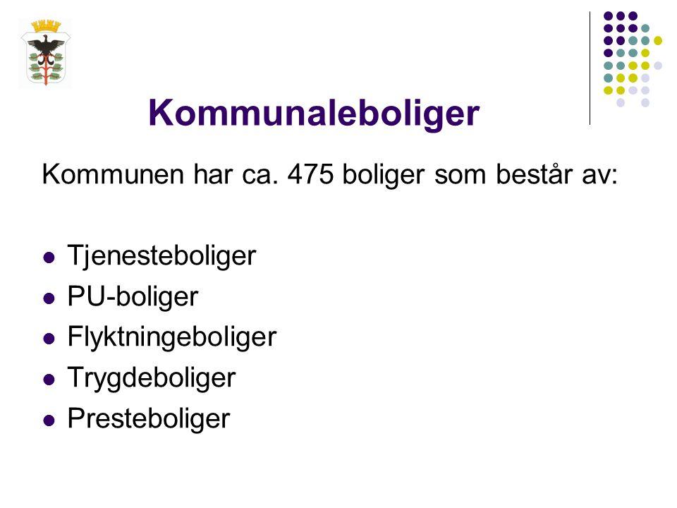 Få kommunale boliger til disposisjon  Kjøper boliger for ca.