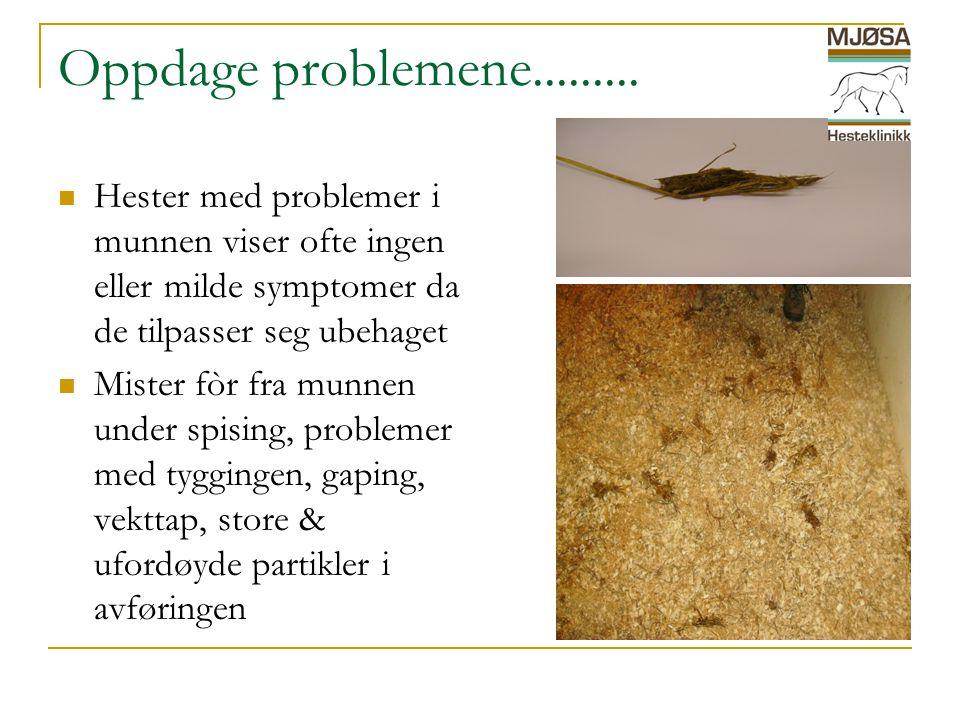 Oppdage problemene.........